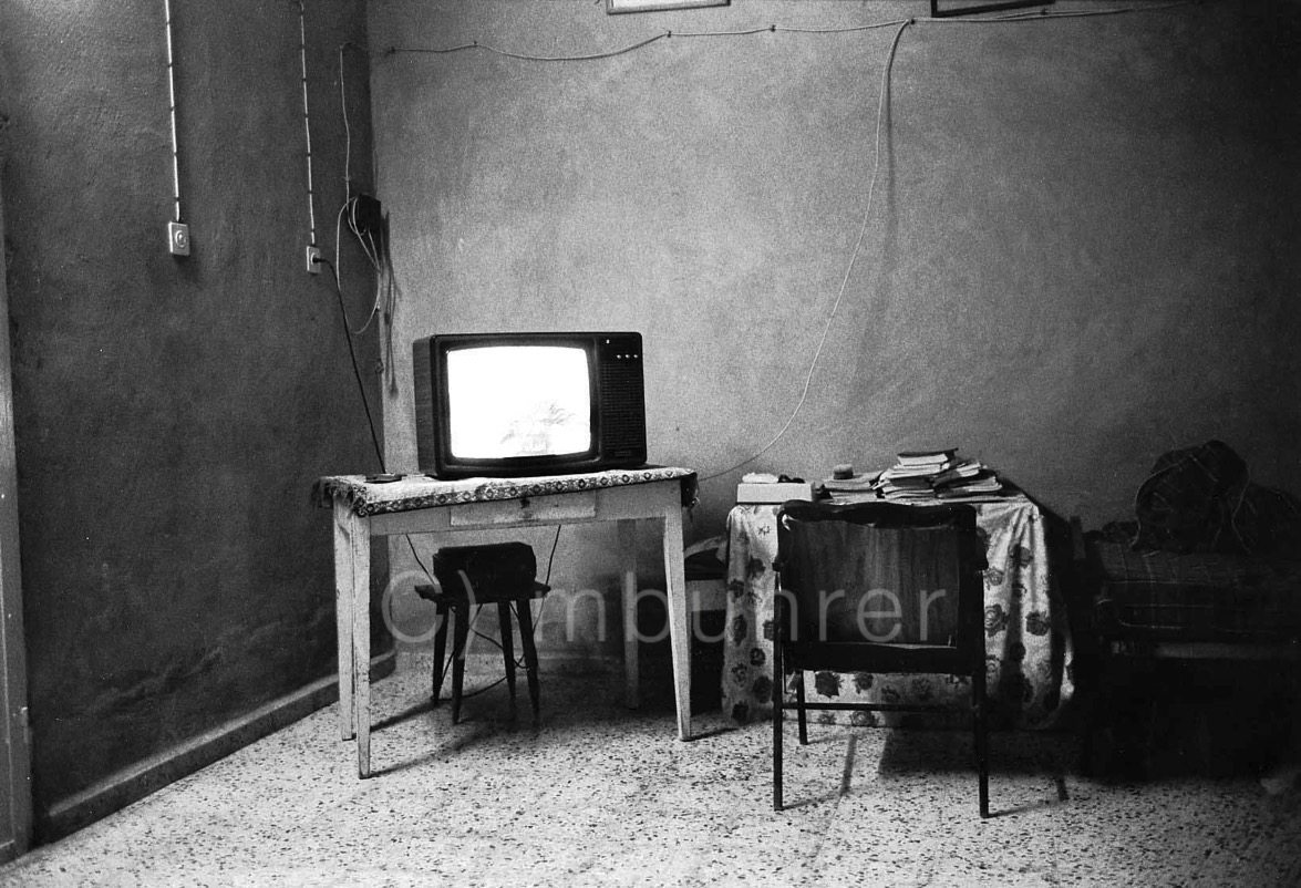 Palestine 11.1991